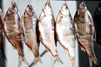 Готуємо в'ялену рибу будинку: проста рецептура, способи зберігання, калорійність продукту