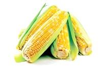 Переваги кукурудзи. Чому корисно їсти цей продукт