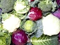 Скільки калорій в капусті, калорійність капуста тушкована